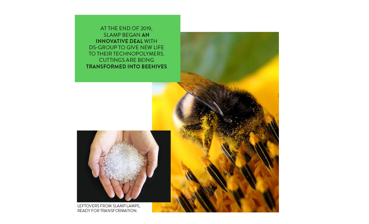 slamp sustainability with bumblebbees desktop banner